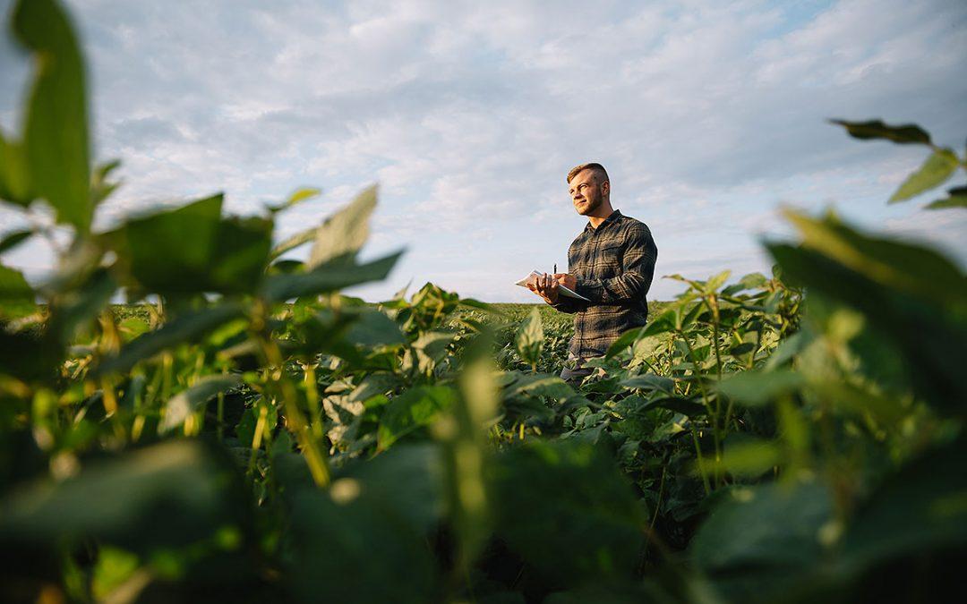 Indenizações pagas pelas seguradoras aos produtores que contrataram seguro rural chegam a R$ 1,7 bilhão no primeiro semestre de 2021